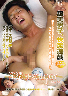 淫猥 SEXOLOGY  file.02