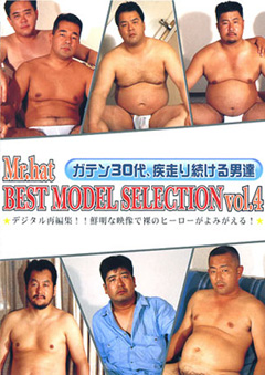 BEST MODEL SELECTION Vol.4