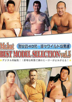 BEST MODEL SELECTION vol.5