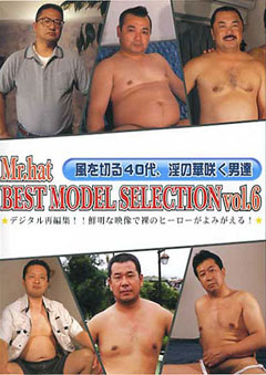 BEST MODEL SELECTION vol.6