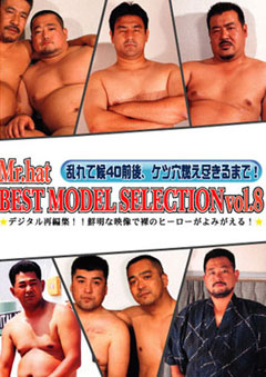 BEST MODEL SELECTION vol.8