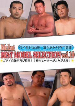 BEST MODEL SELECTION Vol.10