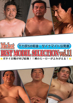 BEST MODEL SELECTION Vol.11