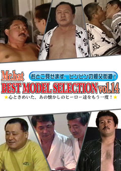 BEST MODEL SELECTION Vol.14