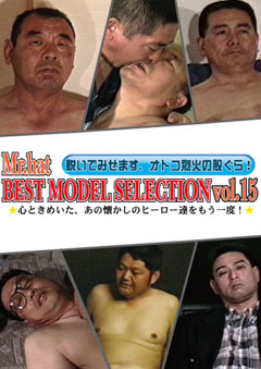 BEST MODEL SELECTION Vol.15