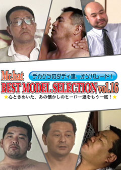 BEST MODEL SELECTION Vol.16