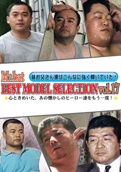 BEST MODEL SELECTION Vol.17