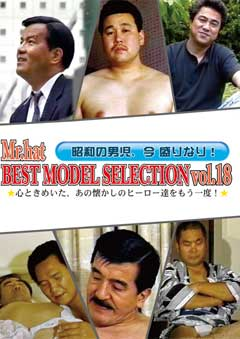 BEST MODEL SELECTION Vol.18