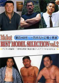 BEST MODEL SELECTION Vol.2