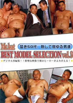 BEST MODEL SELECTION Vol.3