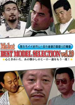 BEST MODEL SELECTION Vol.19