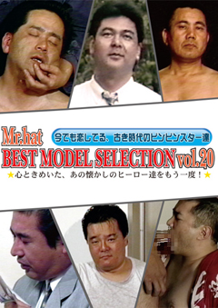 BEST MODEL SELECTION Vol.20